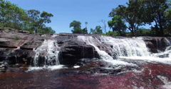 Raising up from the water over a waterfall in Cano Cristales Stock Footage