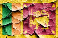 Grunge Sri lanka flag with some cracks and vintage look - stock illustration