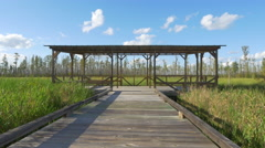Wildlife refuge observation station in the middle of vast swamp Stock Footage