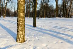 Stock Photo of winter season, the snow