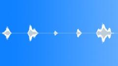 Gasp Sound Effect