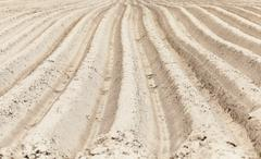 plowed agricultural land - stock photo