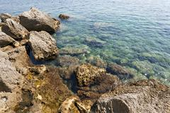 Close-up. Adriatic Sea Stock Photos
