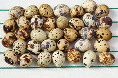 Several small quail eggs lie on a striped towel - stock photo