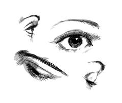 Hand drawing eyes on a white background. Vector illustration Stock Illustration