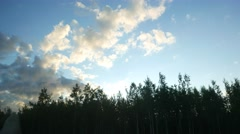 Bright fluffy clouds at blue sky, car ride at wood margin, look up to dark tops Stock Footage