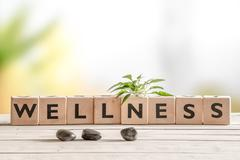 Wellness sign with wooden cubes Stock Photos