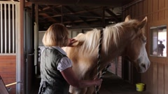 Beautiful Blonde Brushes Palomino Horse 1 - stock footage