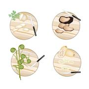 Celery Root , Truffle Mushrooms, Fiddleheads and Water Lily Root Stock Illustration