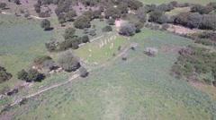 Aerial Corsica Drone menhir - stock footage