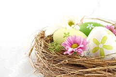 Cut shot of pastel three colored easter eggs in the nest isolated on white Stock Photos