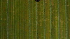 Straight down aerial view of Grass Cutting UK Stock Footage