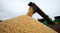 Combine harvester unloaded corn grains in truck - stock footage
