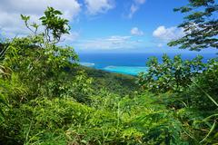 Green vegetation ocean view French Polynesia - stock photo