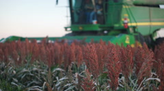 Combine Harvesting Field of Sorghum (Kansas USA) Stock Footage