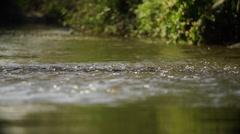Târnava Mare River Stock Footage