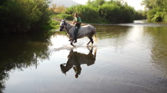 Horse crosses the river Stock Footage