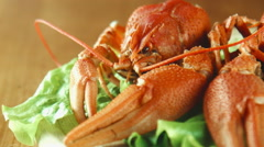 Lobsters crayfish on the tray Stock Footage