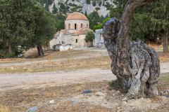 Byzantine church of Panagia Apsinthiotissa Northern Cyprus and olive tree - stock photo