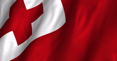 Tonga Waving Flag 4K Stock Footage
