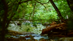 Calm River Flowing Deep In The Forest - stock footage