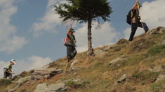 Little boys hiking in mountains 3 - stock footage