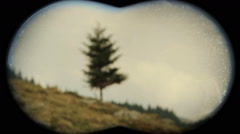 Tree seen through binoculars Stock Footage