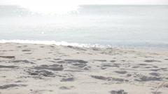 Closeup of bare feet legs walk along beach - stock footage