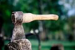 Axe in the stump Stock Photos