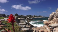 Pacific Grove ,Monterey Stock Footage