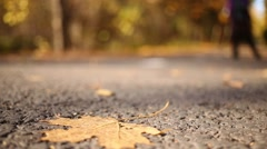 Path in the autumn forest covered with yellow leaves and roller skater Stock Footage