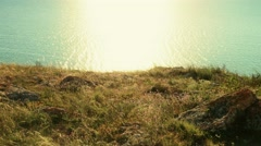 Sea and the grass on the shore, vintage color. Light ripples and sunlit area on Stock Footage