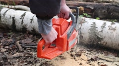 The man sawing a tree in the forest using chainsaws Stock Footage