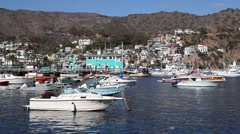 View of Catalina island harbor near Los Angeles, California Stock Footage