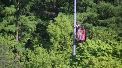 Two electrician working at height in a forest at summer day - stock footage