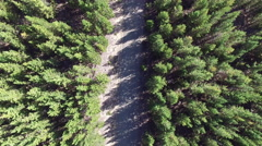 Flying over a Dirt Road Stock Footage