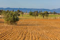 Plowed farm field - stock photo