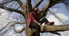 4K Getting away from it all - Young casual man sitting in a tree  - stock footage