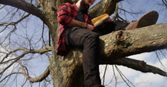 4K Getting away from it all - Young casual man sitting in a tree & reading book - stock footage