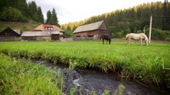 Watermill in a countryside village Stock Footage