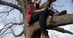 4K Casual hipster businessman sitting in a tree & talking business on the phone Stock Footage