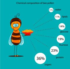 chemical composition of bee pollen - stock illustration
