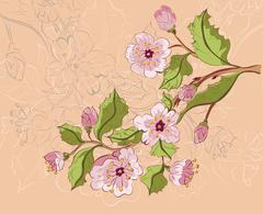 Colored Sketch of Sakura Branch - stock illustration