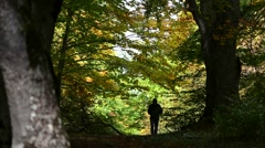 Silhouette of a man walking alone in the immensity of the wood in autumn. - stock footage