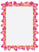 Stock Illustration of Frangipani frame