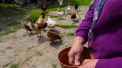 ordinary life in the Belarusian village - stock footage