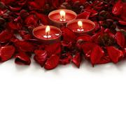 Red rose petals and candles on a white background Stock Photos