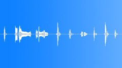 Happy Sound Effect