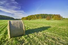 Silage in meadow - stock photo