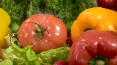 vegetables wash water is slow motion - stock footage